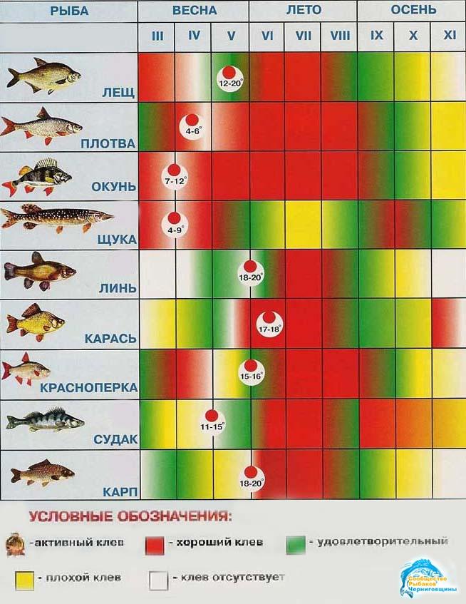 прогноз для рыбака беларусь