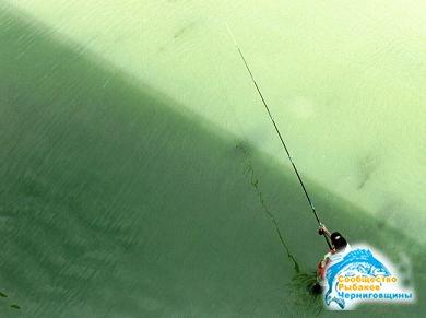 рыбалка ком чернигов