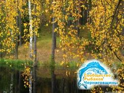 Природный календарь рыболова - осень 2013