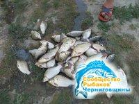 Чудо для рыбалки - барометр Капитан FBR — 007