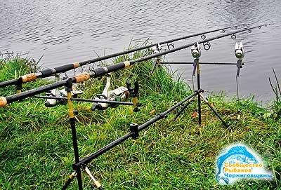 Несколько советов рыболовам