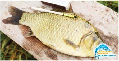 С рыбьего на рыбацкий