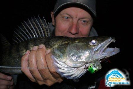 Ночная ловля судака в сентябре
