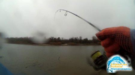 Ловим в дождь