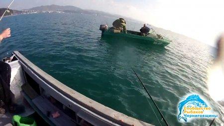 Что клюет на Черном море?