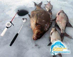 Ловля леща в зимний период