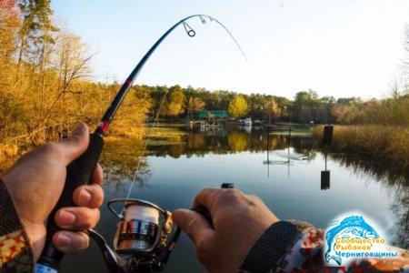 В России с 2019 года ограничат любительскую рыбалку