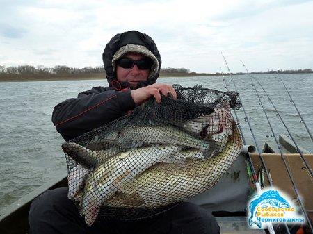 Увлекательная рыбалка на реке Волге