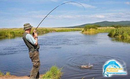 Необходимые компоненты мастерства рыболова