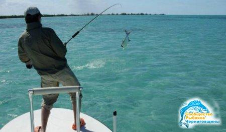Особенности морской рыбалки с яхты