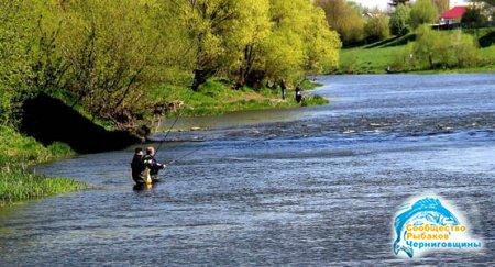 Рыболовные снасти на реке