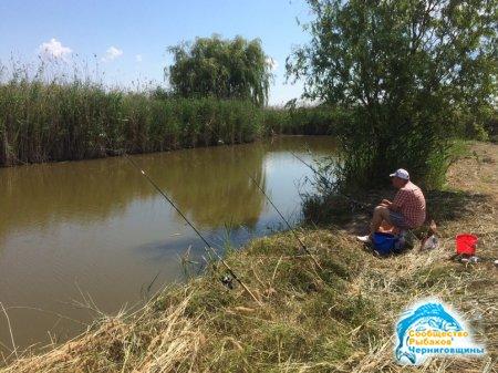 Как ловить рыбу новичку