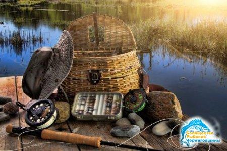 Как правильно рыбачить: советы начинающему рыбаку