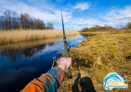 Лучшие места для рыбалки на озере
