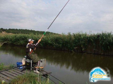 Как правильно ловить рыбу на поплавочную удочку