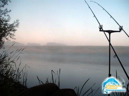 Все о рыбалке для начинающих: заброс, подсечка, вываживание