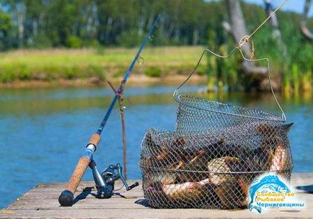 Летняя рыбалка: как сохранить и приготовить рыбу на природе