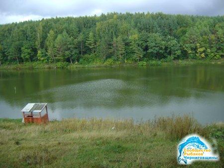 Рыбалка и отдых на экологически чистом пруду