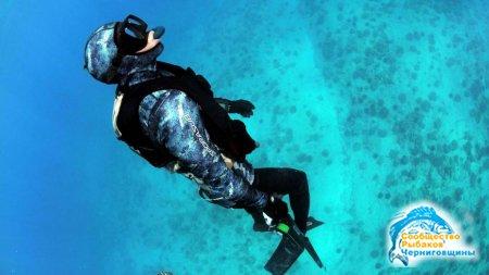 Подводная охота: советы начинающим и необходимое снаряжение